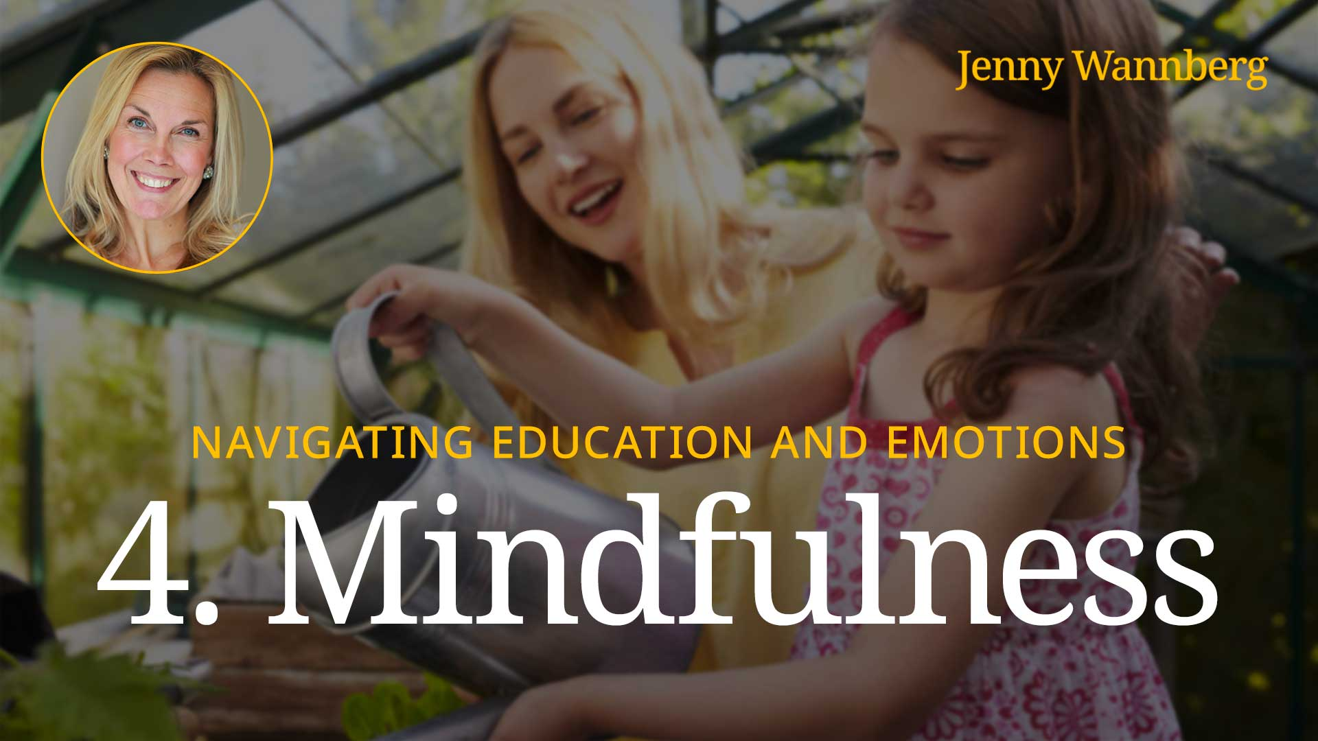 Navigating Education and Emotions - Lesson 04 - Mindfulness