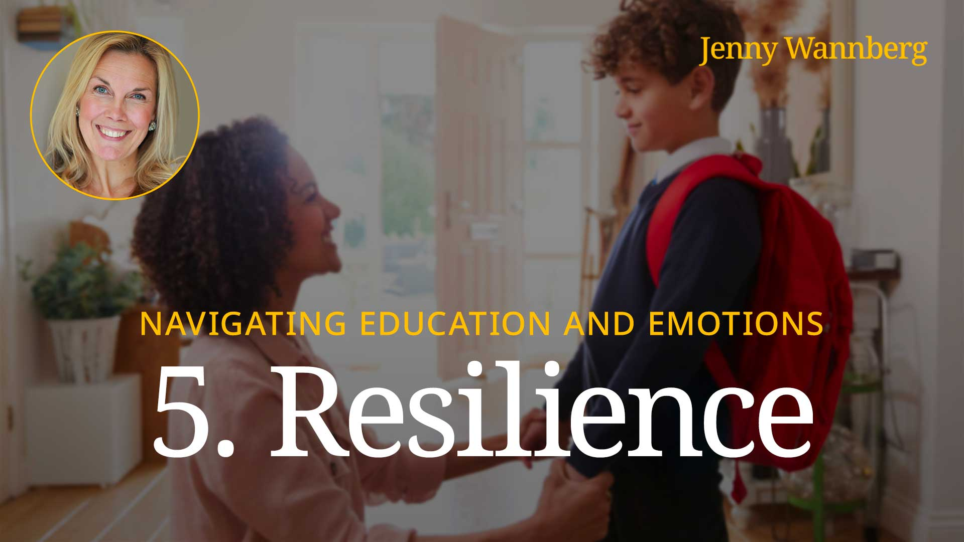 Navigating Education and Emotions - Lesson 05 - Resilience
